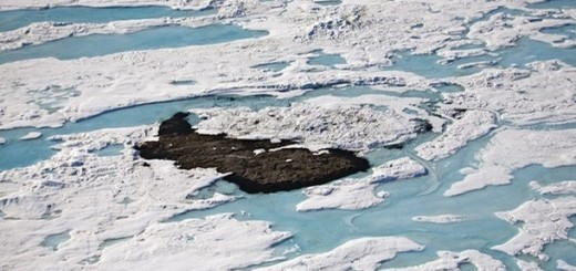 Stray Dog West island is seen in this aerial photo taken July 16, 2007 in Northern Greenland near Cape Evan Monch.     To match feature ARCTIC-ISLAND      REUTERS/Jeff Shea   (GREENLAND)