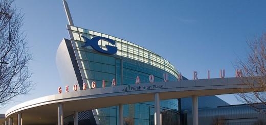 Georgia_Aquarium-2