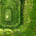 Tunnel of Love, Ukraine – Passageway For Trains and Lovers