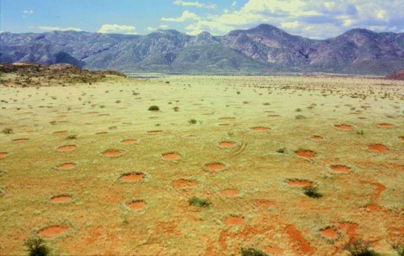 800px-Feenkreise_Namibia