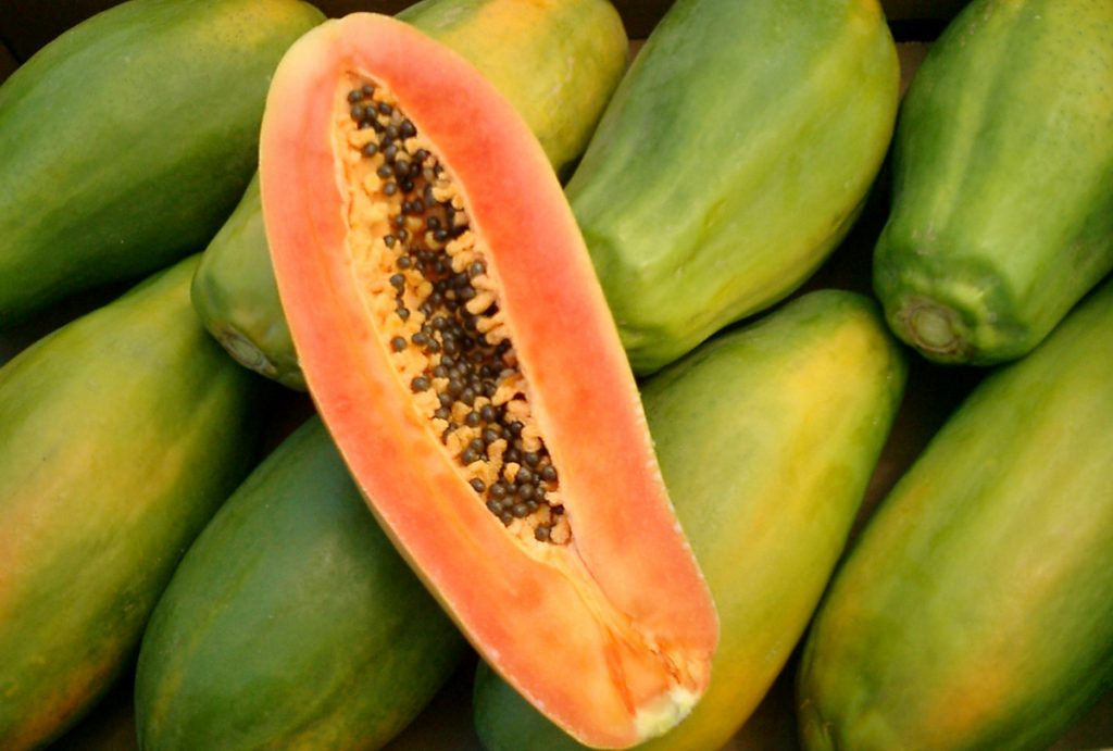 JacobiFruits_Papaya_Background