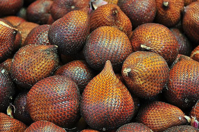 Salak_fruits
