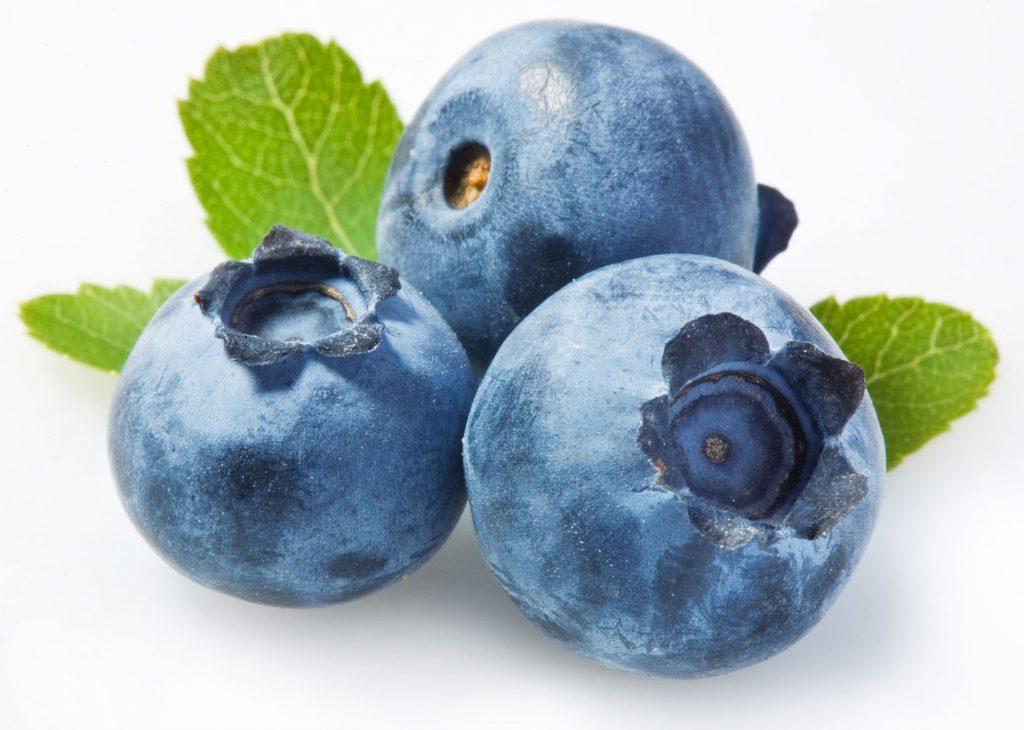 578836-blueberries